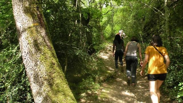 Randonnées dans le Luberon | Vallon de L'Aiguebrun
